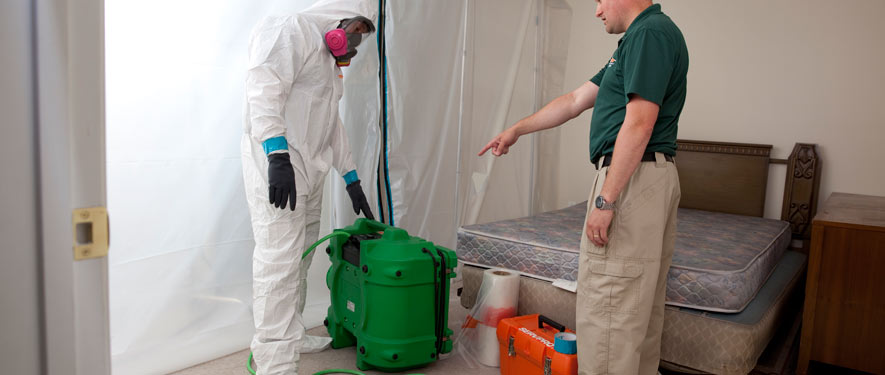 Austin, TX mold removal process